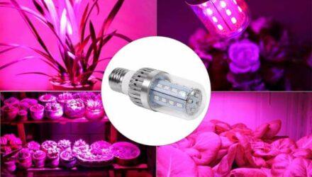 Светильники для растений в теплицах .